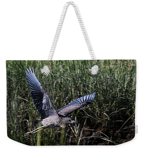 Weekender Tote Bag featuring the photograph Young Heron Takes Flight by William Selander