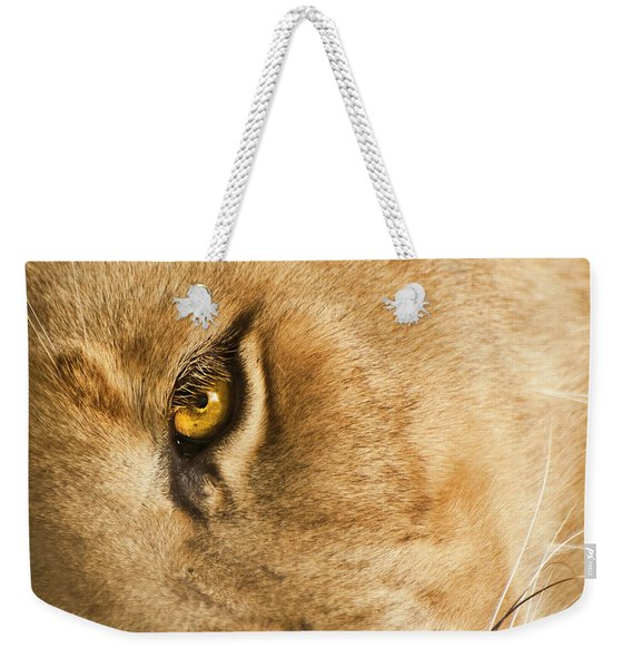 Weekender Tote Bag featuring the photograph Your Lion Eye by Carolyn Marshall