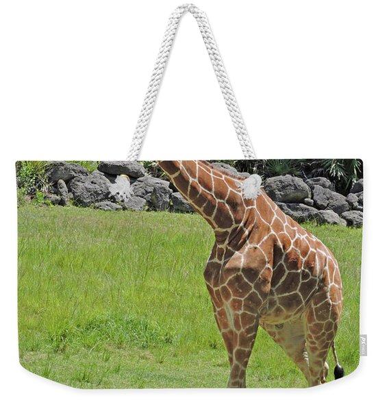 Youthful Weekender Tote Bag