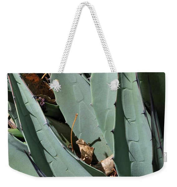 Weekender Tote Bag featuring the photograph Yucca Leaves by Ron Cline