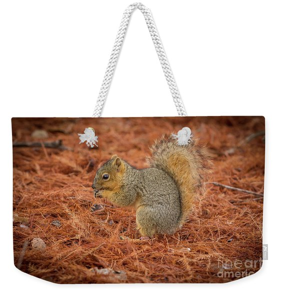 Yum Yum Nuts Wildlife Photography By Kaylyn Franks     Weekender Tote Bag