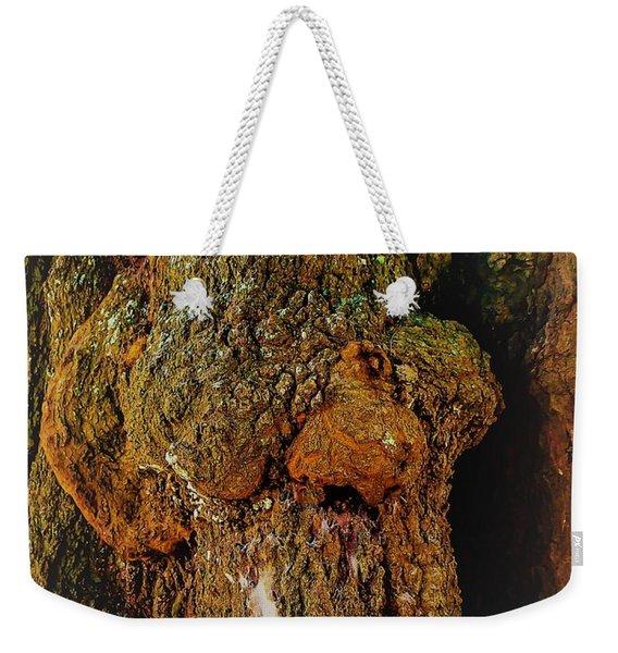 Z Z In A Tree Weekender Tote Bag