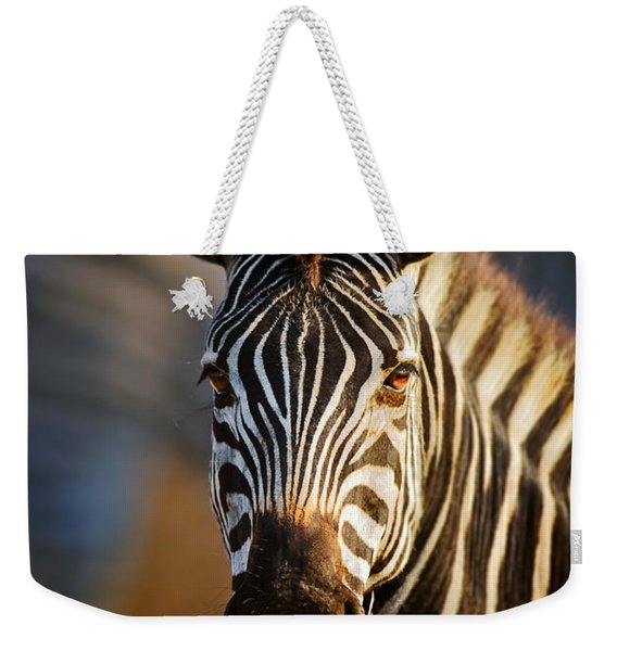 Zebra Close-up Portrait Weekender Tote Bag