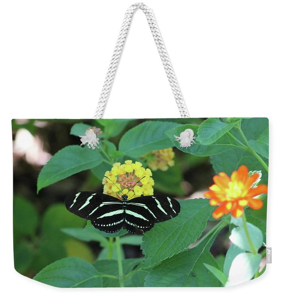 Zebra Longwing Butterfly Heliconius Charitonia Weekender Tote Bag