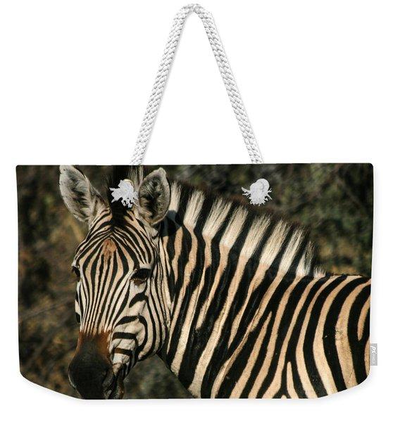 Zebra Watching Sq Weekender Tote Bag