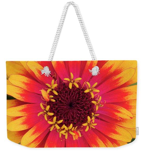 Zinnia Elegans Zowie Yellow Flame Flower  Weekender Tote Bag
