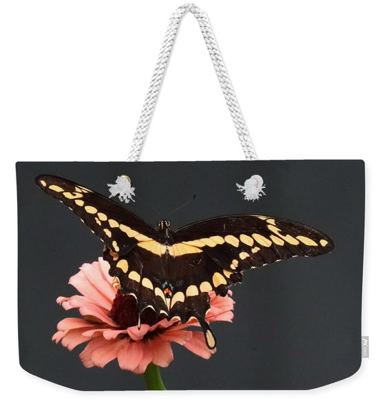 Zinnia With Butterfly 2708  Weekender Tote Bag