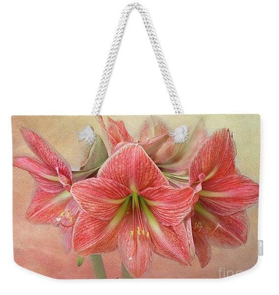 Amaryllis  'terra Cotta Star' Weekender Tote Bag