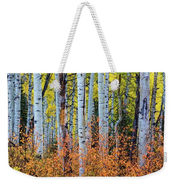 Weekender Tote Bag featuring the photograph Autumn In Color by John De Bord