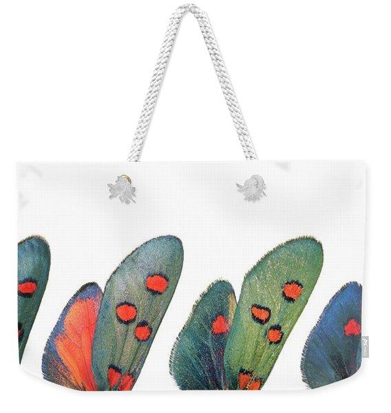 Burnet Moth Wings Weekender Tote Bag