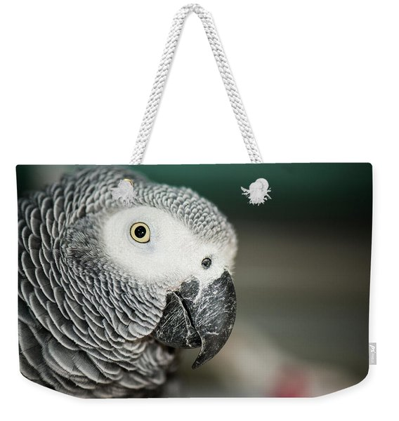 Close Up Of An African Grey Parrot Weekender Tote Bag