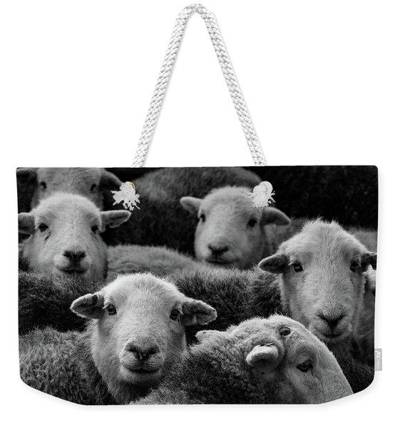 Flock Of Herdwicks Weekender Tote Bag