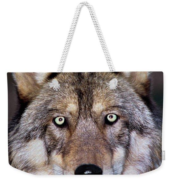 Gray Wolf Portrait Endangered Species Wildlife Rescue Weekender Tote Bag