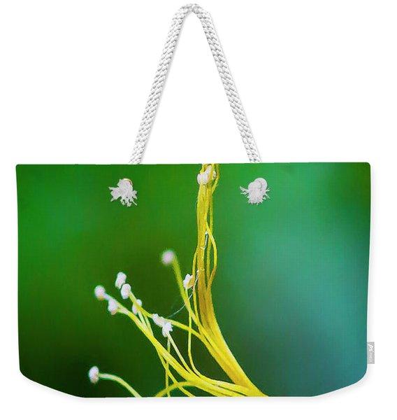 Hanging By A Thread Weekender Tote Bag