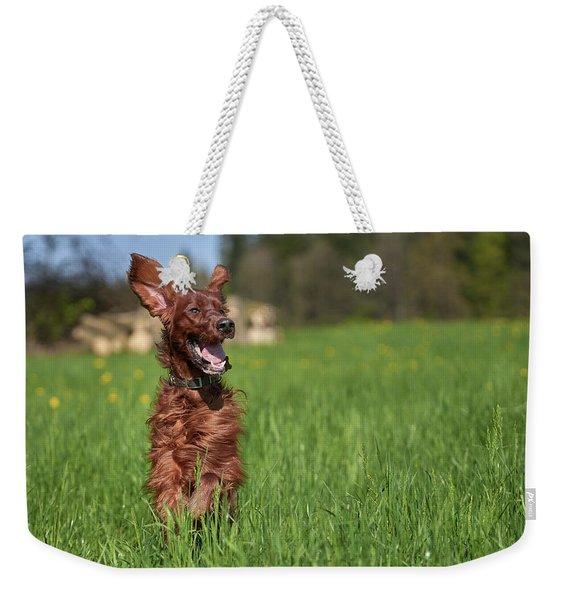 Happy Setter Weekender Tote Bag