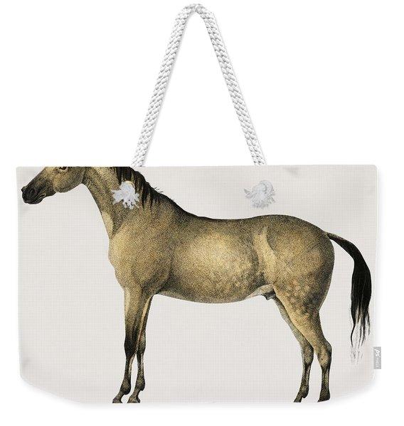 Horse  Equus Ferus Caballus Illustrated By Charles Dessalines D  Orbigny  1806 1876  2 Weekender Tote Bag
