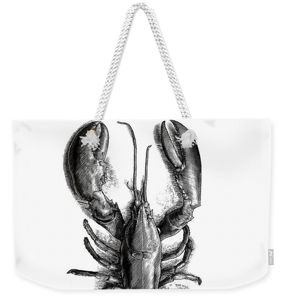 Weekender Tote Bag featuring the drawing Lobster by Clint Hansen