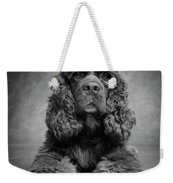 Portrait Of A Cocker Spaniel Dog Weekender Tote Bag