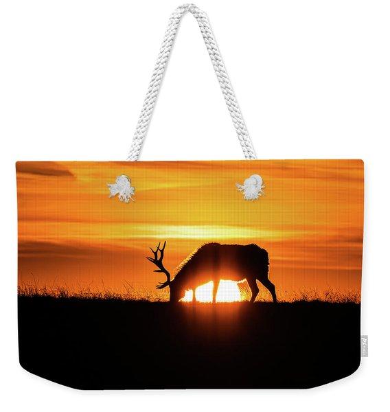 Sunrise Elk Weekender Tote Bag
