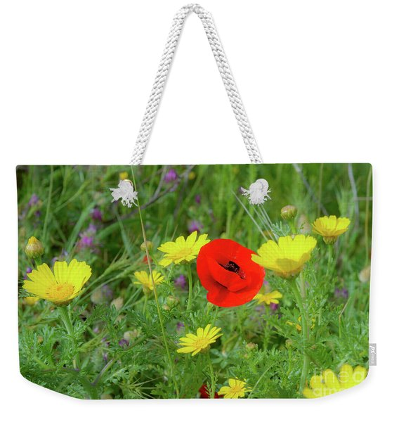 Weekender Tote Bag featuring the photograph The Red Spot by Arik Baltinester