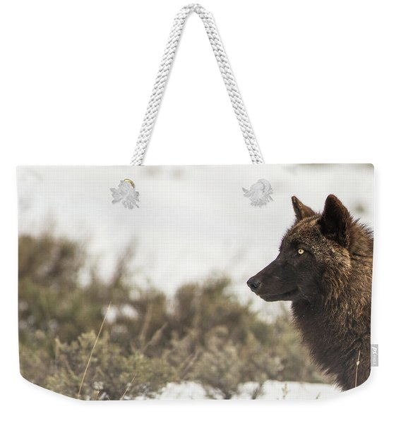Weekender Tote Bag featuring the photograph W15 by Joshua Able's Wildlife