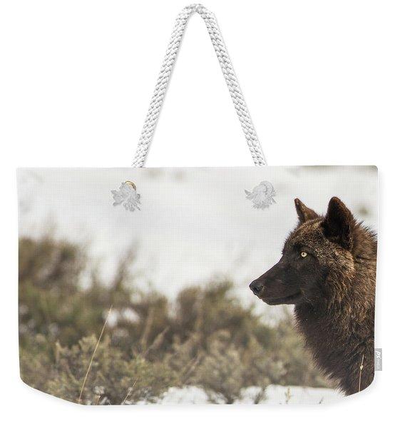 W15 Weekender Tote Bag