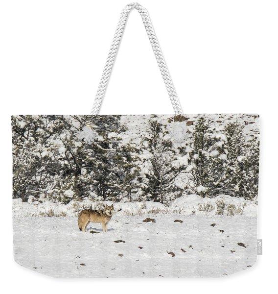 W16 Weekender Tote Bag