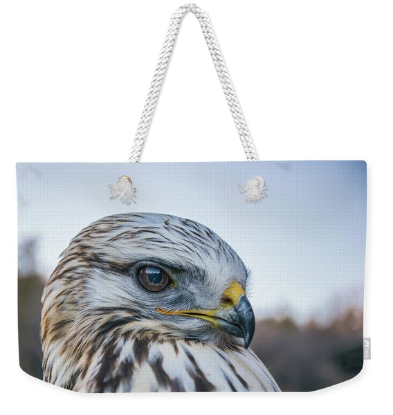 Weekender Tote Bag featuring the photograph B2 by Joshua Able's Wildlife