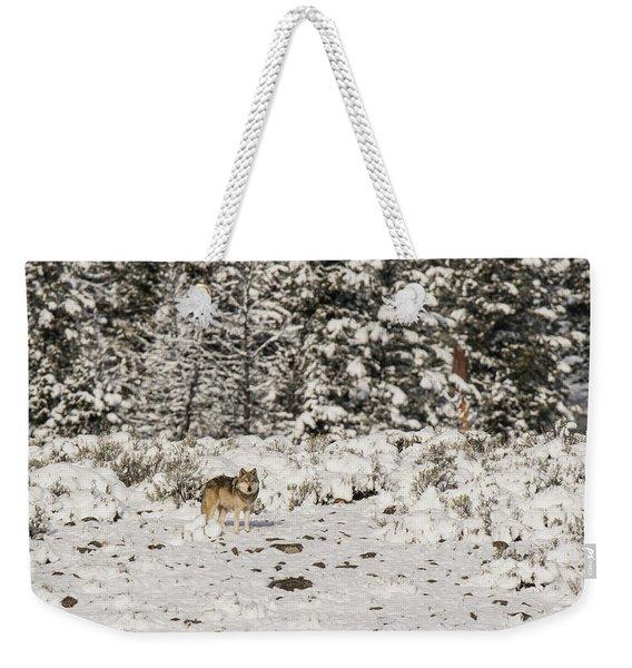 W20 Weekender Tote Bag