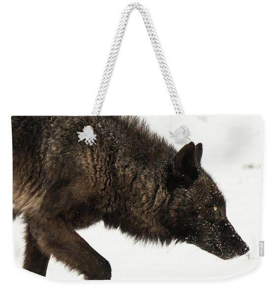 Weekender Tote Bag featuring the photograph W46 by Joshua Able's Wildlife