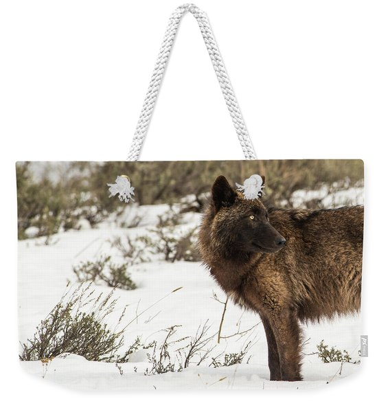 Weekender Tote Bag featuring the photograph W6 by Joshua Able's Wildlife