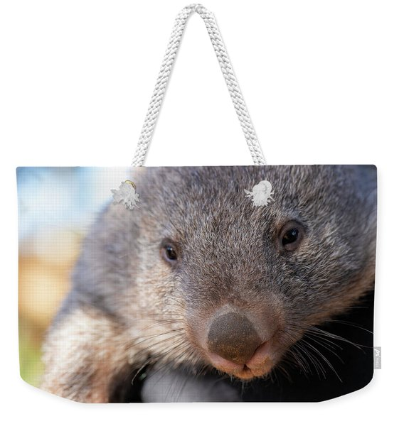 Weekender Tote Bag featuring the photograph Wombat Outside During The Day. by Rob D Imagery