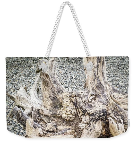 Weekender Tote Bag featuring the photograph Wood Log In Nature No.35 by Juan Contreras