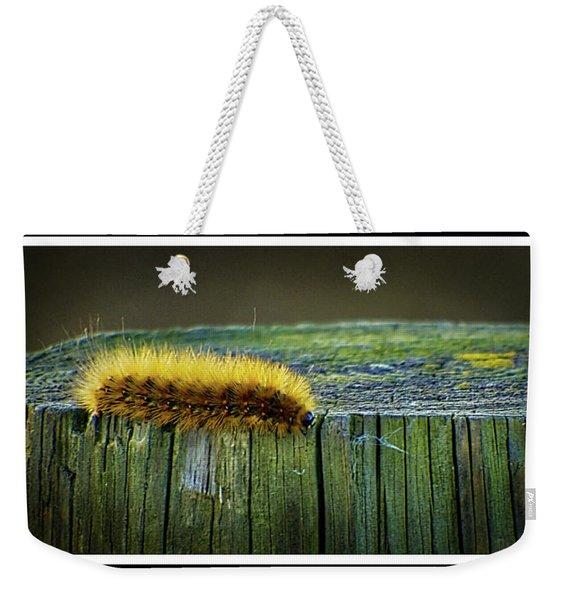 100918-136 Weekender Tote Bag