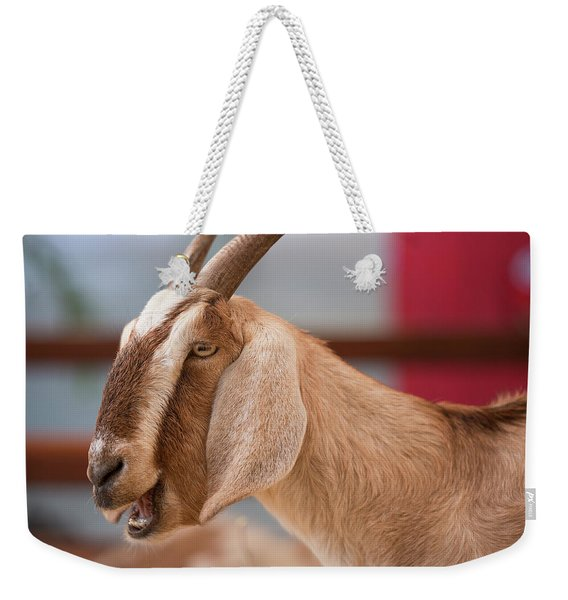 Weekender Tote Bag featuring the photograph Goat by Rob D Imagery
