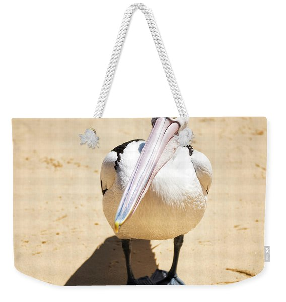 Weekender Tote Bag featuring the photograph Pelican During The Day by Rob D Imagery