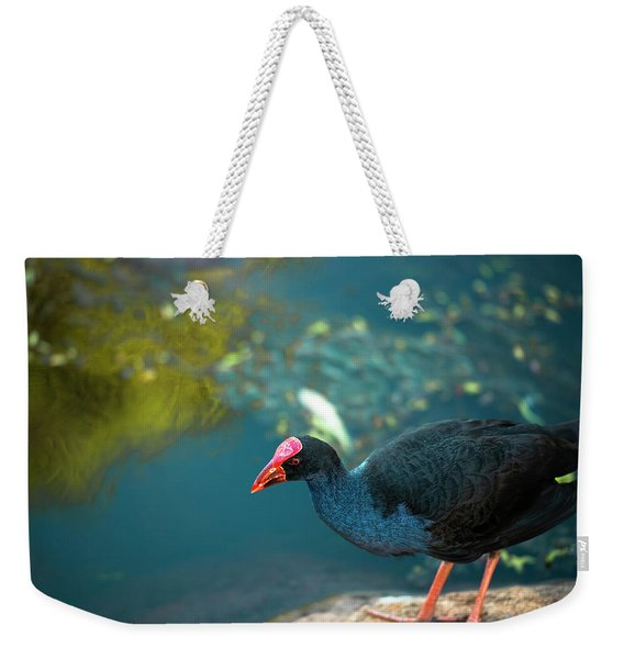 Weekender Tote Bag featuring the photograph Purple Swamphen by Rob D Imagery