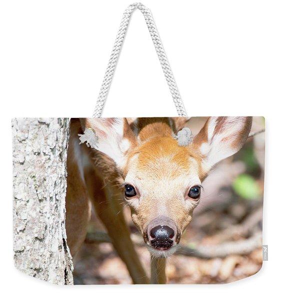 White-tailed Deer Fawn, Animal Portrait Weekender Tote Bag