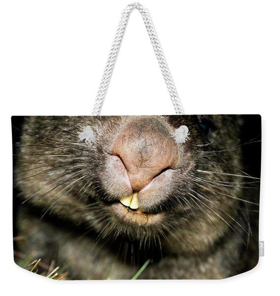 Wombat At Night Weekender Tote Bag