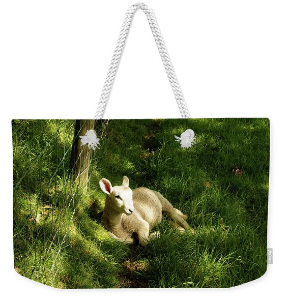 20/06/14  Keswick. Lamb In The Woods. Weekender Tote Bag