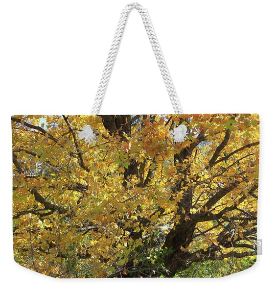 2018 Edna's Tree Up Close Weekender Tote Bag