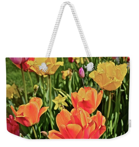 2019 Acewood Tulips And Daffodils 1 Weekender Tote Bag