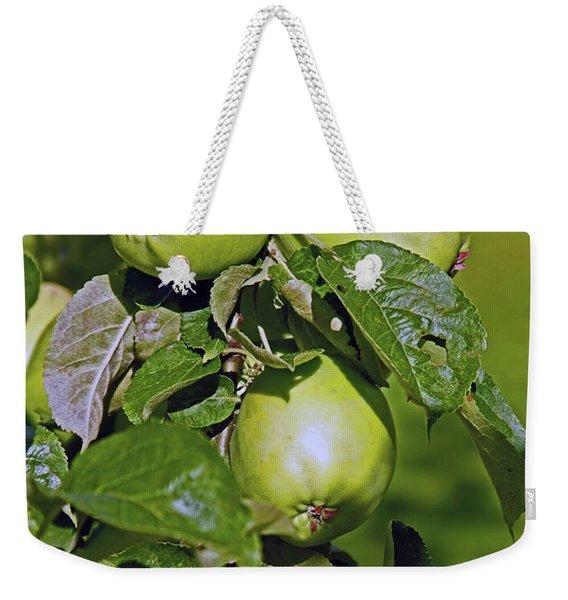21/07/14  Chorley.  Astley Hall. Weekender Tote Bag