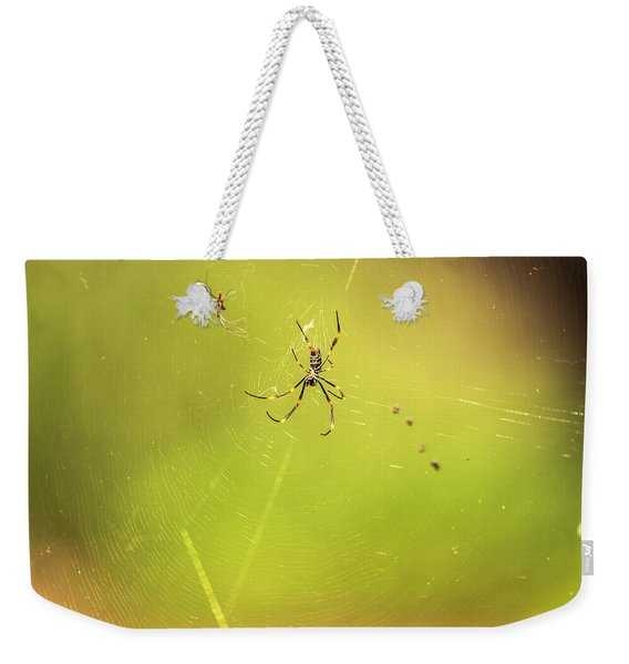 Weekender Tote Bag featuring the photograph Golden Orb Spider. by Rob D Imagery