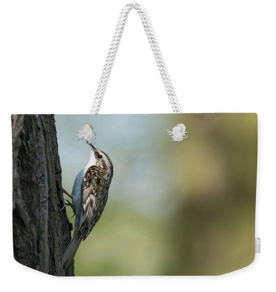 Treecreeper Weekender Tote Bag