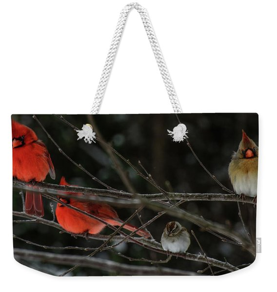 3cardinals And A Sparrow Weekender Tote Bag