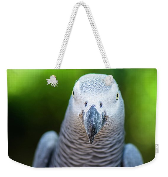 Weekender Tote Bag featuring the photograph African Grey Parrot by Rob D Imagery