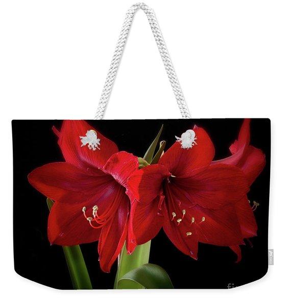 Amaryllis Merlot' Weekender Tote Bag