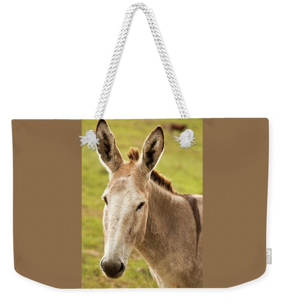 Weekender Tote Bag featuring the photograph Donkey Out In Nature by Rob D Imagery
