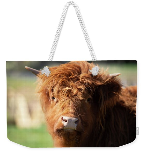 Highland Cow On The Farm Weekender Tote Bag